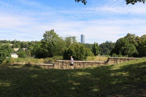 Le plateau de Rham